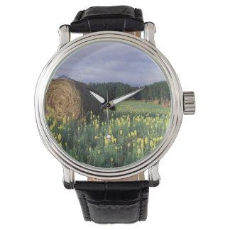 カナダ、ブリティッシュ・コロンビア、Kitwanga。 黄色 腕時計