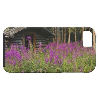 カナダ、ユーコン準州のロスの川区域、断念された小屋 iPhone SE/5/5s ケース