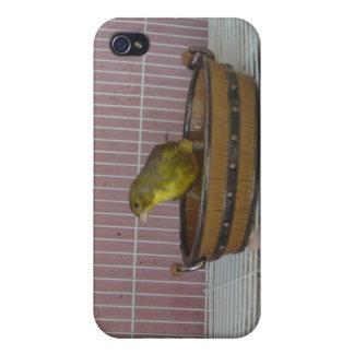 カナリア色の昔の浴槽 iPhone 4/4Sケース