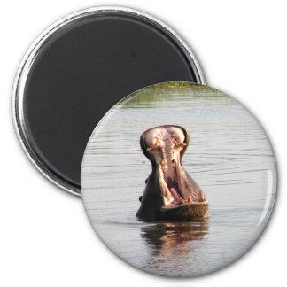 カバの口(のあたりでまたは正方形の磁石) マグネット
