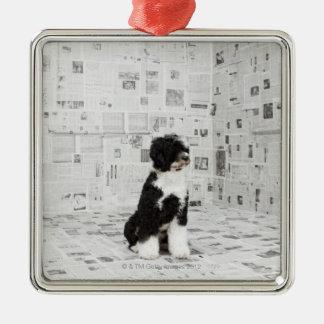 カバーされる部屋のポルトガル水犬 シルバーカラー正方形オーナメント