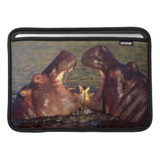 カバ(カバAmphibius)の雄牛 MacBook スリーブ