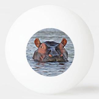 カバ 卓球ボール