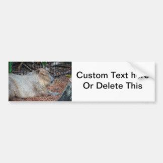 カピバラの動物の側面図の野性生物の生き物のイメージ バンパーステッカー