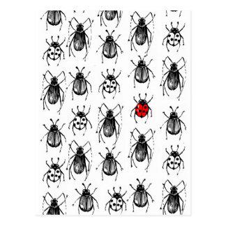 カブトムシおよびてんとう虫 ポストカード