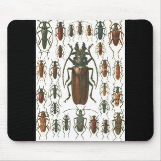 カブトムシのカブトムシは、そう多くのカブトムシ映像を模造します マウスパッド