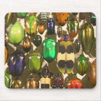 カブトムシ、虫および昆虫 マウスパッド