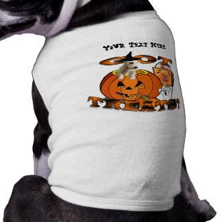 カボチャからかいま見ているちょうど余りにWestieのかわいい子犬 ペット服
