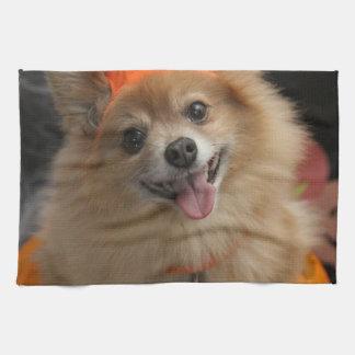 カボチャハロウィンの微笑のずるいポメラニア犬の子犬 キッチンタオル