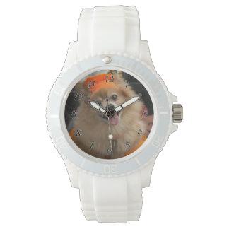 カボチャハロウィンの微笑のずるいポメラニア犬の子犬 腕時計