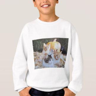 カボチャ猫の群生 スウェットシャツ
