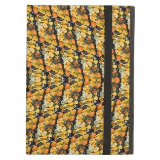 カボチャ、南瓜およびひょうたん-抽象芸術 iPad AIRケース