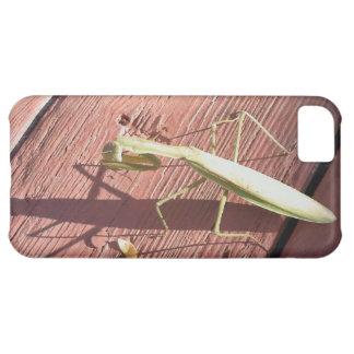カマキリの見ること iPhone5Cケース
