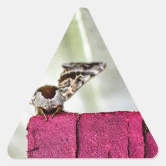 カムフラージュのガ 三角形シール