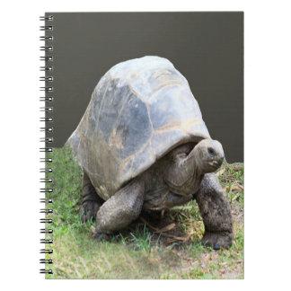 カメのノート ノートブック