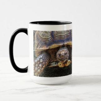 カメの写真 マグカップ