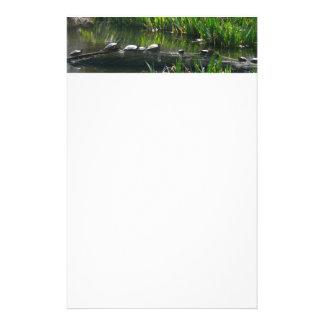カメの緑の自然の写真の列 便箋