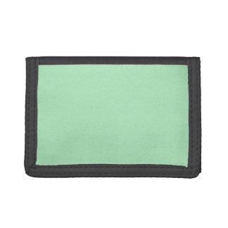 カメオの緑のミント2015色の傾向のテンプレート