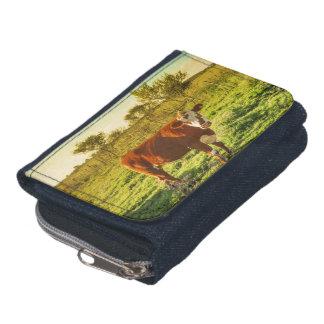 カメラに直面する草原の孤独な牛