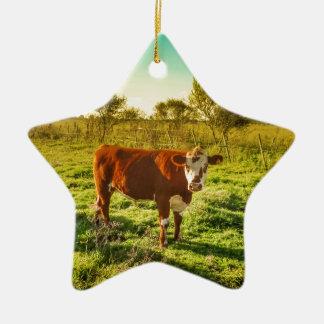 カメラに直面する草原の孤独な牛 セラミックオーナメント