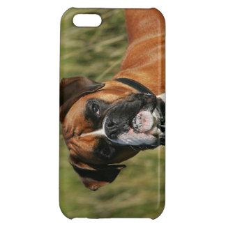 カメラを凝視しているボクサー犬 iPhone5C