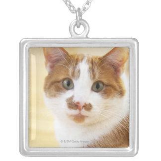 カメラを見ているオレンジおよび白い猫 シルバープレートネックレス