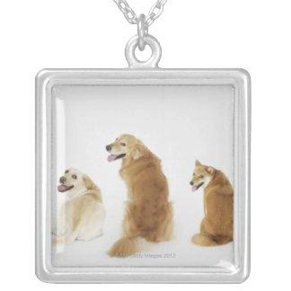 カメラを見ている3匹の犬 シルバープレートネックレス