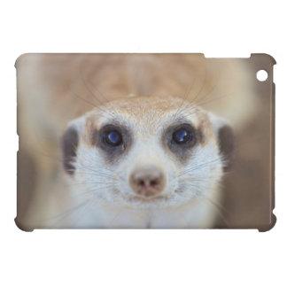 カメラを調べるMeerkat iPad Miniケース