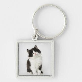 カメラ若い子ネコの着席の検討 キーホルダー