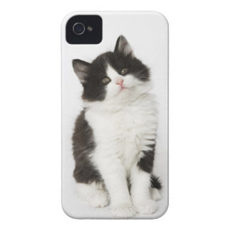 カメラ若い子ネコの着席の検討 Case-Mate iPhone 4 ケース