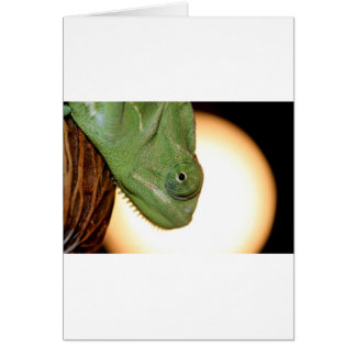 カメレオン カード