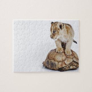 カメ、白い背景に立っているベビーのライオン ジグソーパズル
