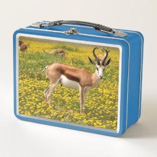カモシカ メタルランチボックス