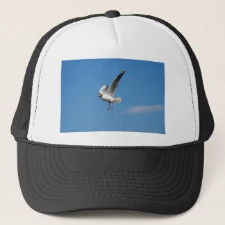 カモメの鳥 キャップ