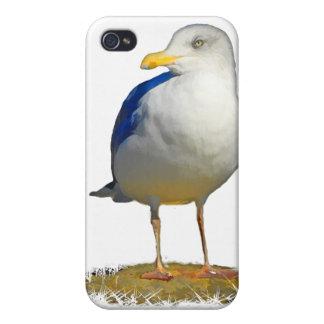 カモメはあなたの彼の目を得ました iPhone 4/4S CASE