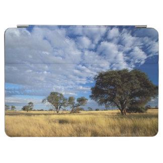 カラハリ砂漠場面、国境外Kgalagadi iPad Air カバー