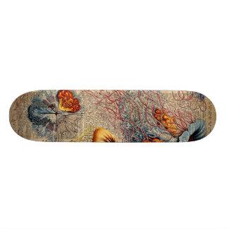 カラフルなくらげの海洋生物のヴィンテージの古書のページ オリジナルスケートボード