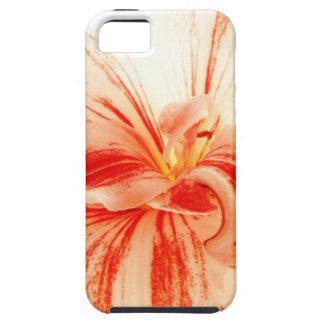 カラフルなアマリリスの花 iPhone SE/5/5s ケース
