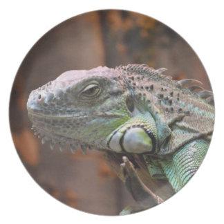 カラフルなイグアナのトカゲが付いているプレート プレート