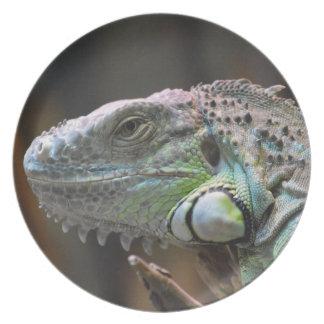カラフルなイグアナのトカゲの頭部が付いているプレート プレート