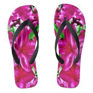カラフルなピンクの花のツツジの双安定回路のサンダル ビーチサンダル