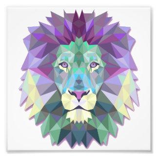 カラフルなライオンのコダック専門の写真の紙 フォトプリント