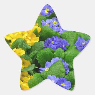 カラフルな冬のサクラソウパターン 星シール