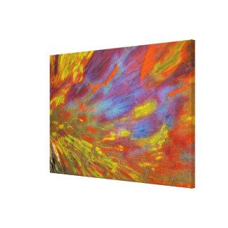 カラフルな化石木のクローズアップ キャンバスプリント