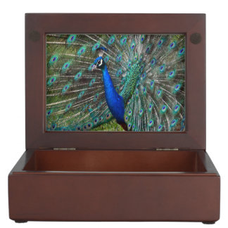 カラフルな孔雀のプリント ジュエリーボックス