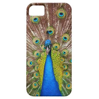 カラフルな孔雀の電話箱 iPhone SE/5/5s ケース