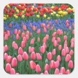 カラフルな春のチューリップの庭 正方形シール・ステッカー