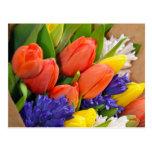 カラフルな春のチューリップの花束 はがき