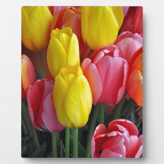 カラフルな春のチューリップの花束 フォトプラーク