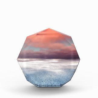 カラフルな海氷の反射 表彰盾